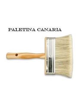 PALETINA CANARIA N? 4